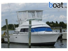 Bertram 33  33 Flybridge Cruiser