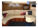 Bildergalerie Sea Ray Sundancer 390 - imágen 15