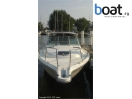 Bildergalerie Tiara 3100 Pursuit Open - Bild 4