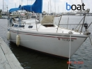 Bildergalerie Catalina 30 Sailboat - Image 2