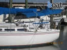 Bildergalerie Catalina 30 Sailboat - Image 25