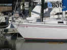 Bildergalerie Catalina 30 Sailboat - Image 26
