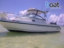 Bildergalerie Boston Whaler 260 Conquest Walkaround - slika 2
