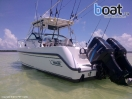 Bildergalerie Boston Whaler 260 Conquest Walkaround - slika 4