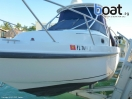 Bildergalerie Boston Whaler 260 Conquest Walkaround - slika 7