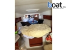 Bildergalerie Sea Ray 320 Sundancer - Foto 7