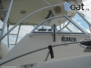 Bildergalerie World Cat 266SC - imágen 5