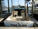 Bildergalerie Chris-Craft 36 Commander Express - Foto 4
