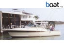 Bildergalerie Chris-Craft 36 Commander Express - Foto 6
