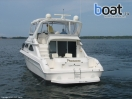 Bildergalerie Sea Ray 440 Express Bridge - Image 7