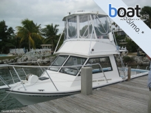 Island Hopper 30 Dive/ Fish Flybridge