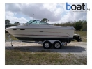 boat for sale |  Sea Ray 230 Cuddy Cabin In North Fort Myers, Fl