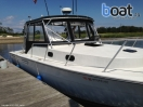 Bildergalerie Tiara 31 pursuit - Image 18