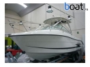Bildergalerie Hydra Sport 2300 Vx Sea Ray Boston Whaler - Image 1