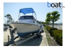boat for sale |   20' Shamrock 20 Predator