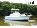 boat for sale |  Albin 32 Command Bridge