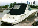Bildergalerie Sea Ray 310 Sundancer - Foto 15
