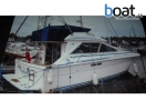 Bildergalerie Sea Ray 300 Sedan Bridge - Foto 2