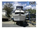 Bildergalerie Great Carver 325 Aft Motor Yacht Buy !! - Bild 3
