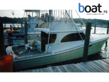 Topaz 38 Flybridge SF ..Must Sell.. (Needs Work)