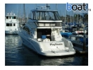 Bildergalerie Sea Ray 550 Sedan Bridge - slika 4